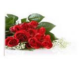 Логотип Аленький цветочек, магазин цветов