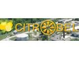 Логотип Цитробел, производственная компания