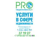"""Логотип ЦЕНТР """"PROНЕДВИЖИМОСТЬ 31"""""""
