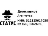 Логотип Детективное агентство Статус
